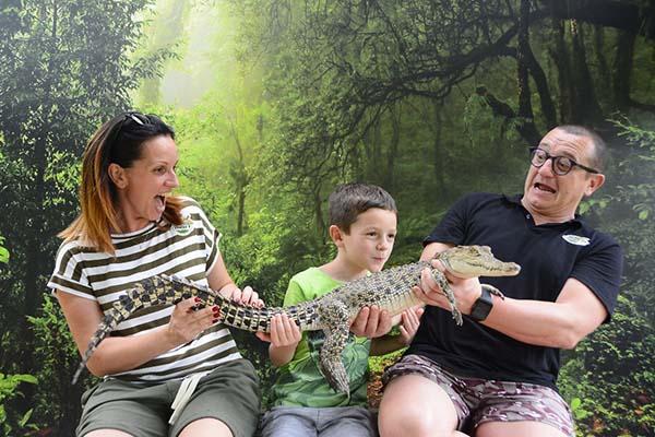 Crocodile Adventure_3