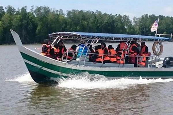 Kuala Sepetang Mangrove Cruise_5