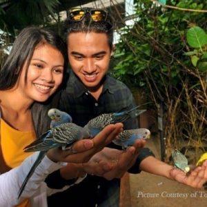 Langkawi-Wildlife-Park-Malaysia