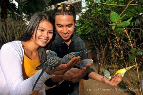 Langkawi-Wildlife-Park-Malaysia_1