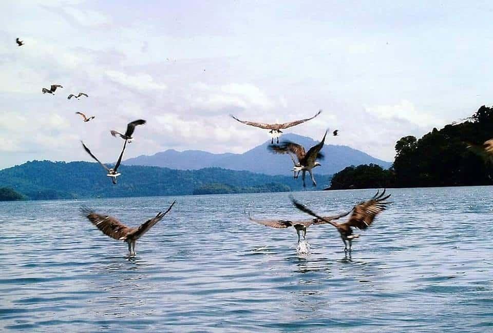 langkawi island hopping package
