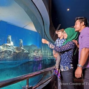 langkawi-underwater-world-ticket