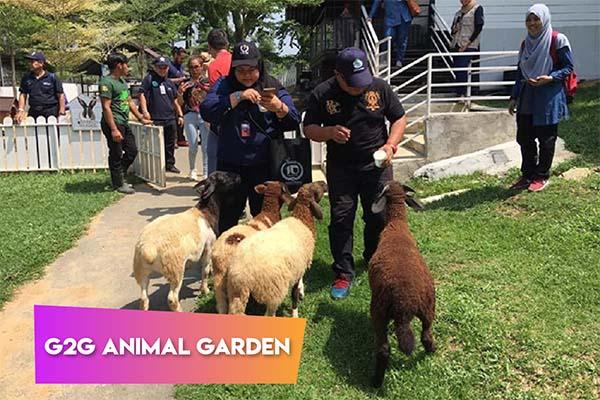G2G Animal Garden