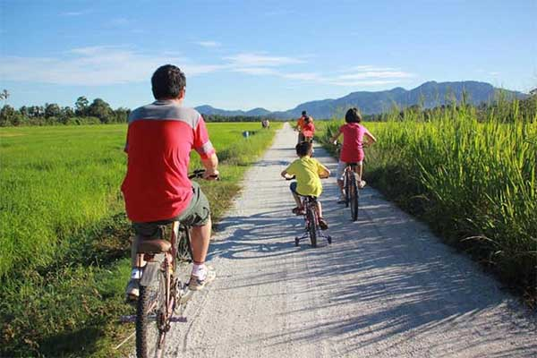 Balik-Pulau-Cycling-Tour-Return-Transfer-12