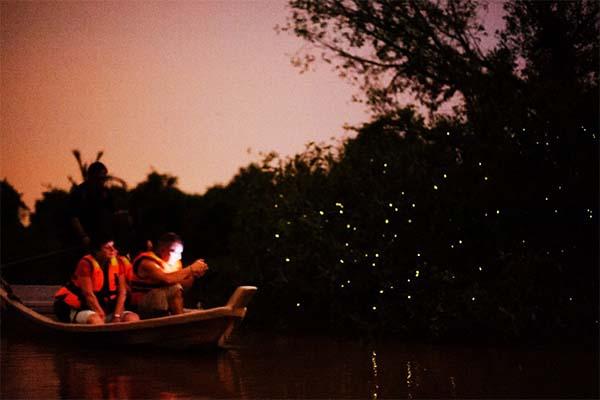 Cherating-Fireflies-Boat-Tour-4
