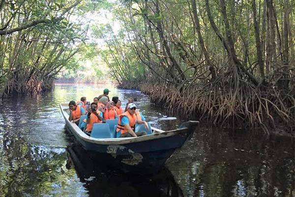 Cherating-Mangrove-River-Cruise-5
