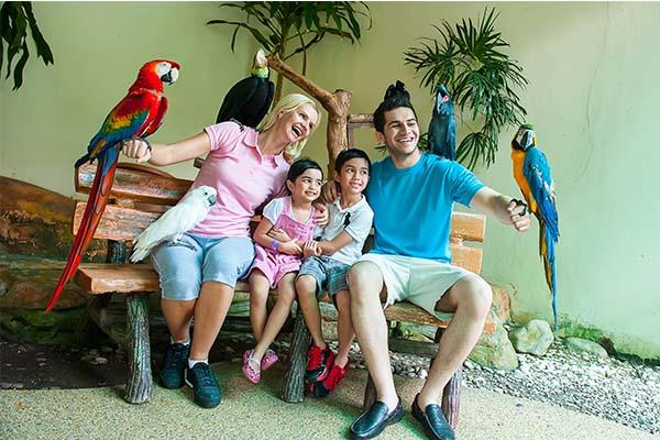 KL Bird Park 3