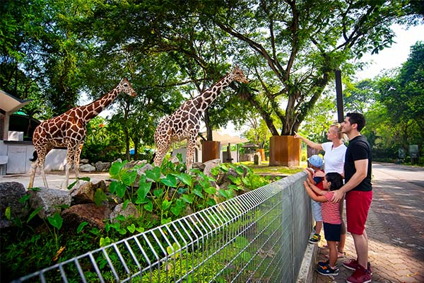 Zoo Negara Private Tour 5