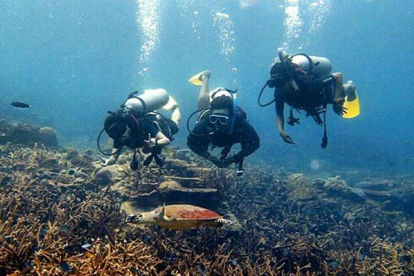 Tioman-Beach-Dive-